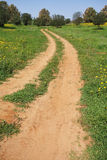 Spring, the rural dirt road Stock Image