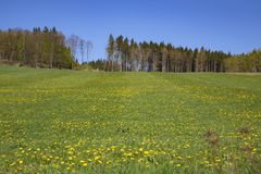 Spring rural landscape in Czech Republic. Blue sky.n royalty free stock photo