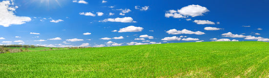 Spring rural landscape with field and blue sky, a panorama Royalty Free Stock Images