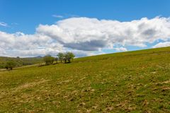 Rural landscape field with green grass and blue sky with cumulus clouds. Spring rural landscape field with green grass and blue sky with cumulus clouds Royalty Free Stock Photography