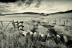 Spring rural landscape with stone wall,  Scotland Stock Images