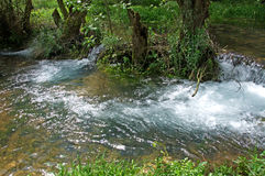 Spring rushing stream with whirlpools, Serbia Royalty Free Stock Images