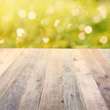 Spring rustic background with green bokeh Royalty Free Stock Photos