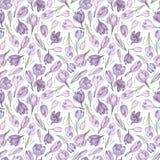 Spring saffron on white watercolor seamless pattern royalty free illustration