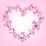 Spring sakura flowers Valentines day background Royalty Free Stock Photography