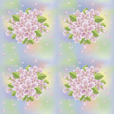 Spring sakura seamless background, vectorSpring sakura blossom seamless background, vector Royalty Free Stock Image