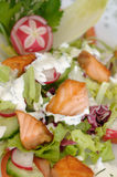 Spring Salad Royalty Free Stock Image