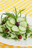 Spring salad. From the cucumbers with the cranberry Stock Images