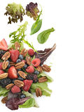 Spring Salad With Berries And Peanuts. On White Background royalty free stock photo