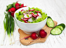 Spring salad with cucumbers and radish Royalty Free Stock Image