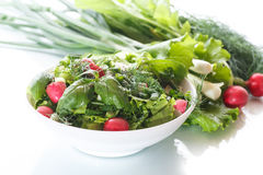 Spring salad from early vegetables, lettuce leaves, radishes and herbs Royalty Free Stock Images