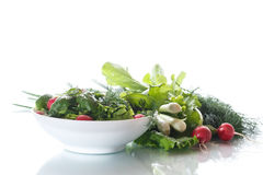 Spring salad from early vegetables, lettuce leaves, radishes and herbs Royalty Free Stock Photography