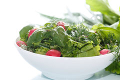 Spring salad from early vegetables, lettuce leaves, radishes and herbs Stock Images