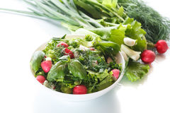 Spring salad from early vegetables, lettuce leaves, radishes and herbs Royalty Free Stock Image
