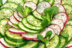 Spring salad with fresh cucumber and radish Stock Photos