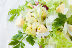 Spring salad with greens and eggs Royalty Free Stock Photos
