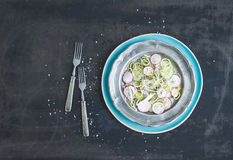 Spring salad with leek, radish and cucumber in vintage metal plate stock photo