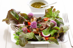 Spring salad with mushrooms Royalty Free Stock Photography