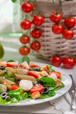 Spring salad with pasta Stock Images