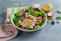 Spring salad with radishes, chicken breast and edible flower Stock Photography
