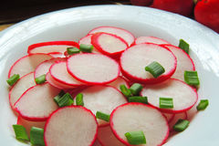 Spring salad with radishes and cucumber. With olive oil Royalty Free Stock Image