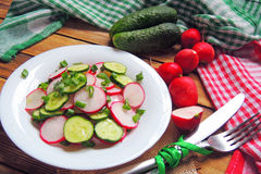 Spring salad with radishes and cucumber. With olive oil Stock Photo