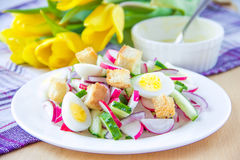 Spring salad with radishes, cucumbers, eggs and crouton. In white plate Royalty Free Stock Photo