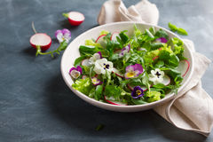 Spring salad with radishes, edible flower and sauce Royalty Free Stock Photo