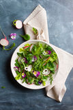 Spring salad with radishes, edible flower and sauce Stock Images