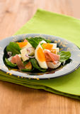 Spring salad with spinach,egg Stock Photography