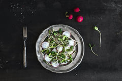 Spring salad with sunflower sprouts and radish in vintage metal plate over rustic dark painted background. Top view Stock Photos