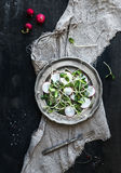 Spring salad with sunflower sprouts and radish in vintage metal plate over rustic dark painted background. Top view Royalty Free Stock Images