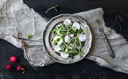 Spring salad with sunflower sprouts and radish in vintage metal plate. Over rustic dark painted background, top view Stock Image