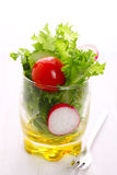 Spring salad with tomato, cucumber and radish Stock Image