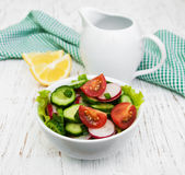 Spring salad with tomato, cucumbers and radish Stock Photography