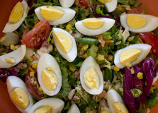 Spring salad of tomatoes, corn, scotch kale, eggs dressed with o Royalty Free Stock Image
