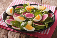 Spring salad of watermelon radishes, eggs, spinach and arugula c. Lose-up on a plate. horizontal Royalty Free Stock Photos