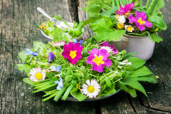 Spring salad, wild herbs. Edible flowers royalty free stock photo