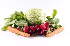 Spring salat Royalty Free Stock Images