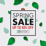 Spring sale background banner with frame, beautiful green leaves and ladybug. Design template for online store, flyer Stock Photography