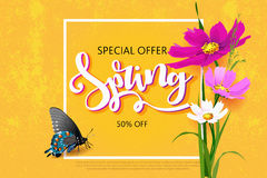 Spring sale background with beautiful colorful flower. Vector illustration template.Wallpaper. Flyers, invitation, posters, brochure, voucher discount Stock Image