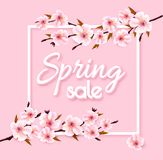 Spring sale background with blooming sakura. Vector stock photos