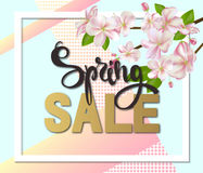 Spring sale background with flowers. Season discount banner design with cherry blossoms and petals Stock Images