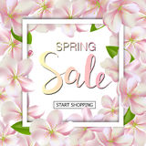 Spring sale background with flowers. Season discount banner design with cherry blossoms and petals Royalty Free Stock Images