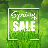 Spring sale background. With grass on a white frame design vector illustration