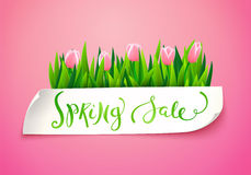 Spring sale background Royalty Free Stock Photography
