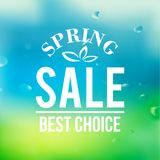 Spring sale background with text Stock Images