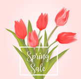 Spring sale background with tulips. Spring sale background with red tulip flowers vector illustration
