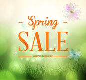 Spring sale background Royalty Free Stock Photos