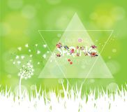 Spring sale background with white dandelion Royalty Free Stock Photography